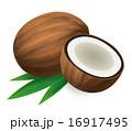 ココナッツ 16917495