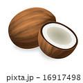 ココナッツ 16917498