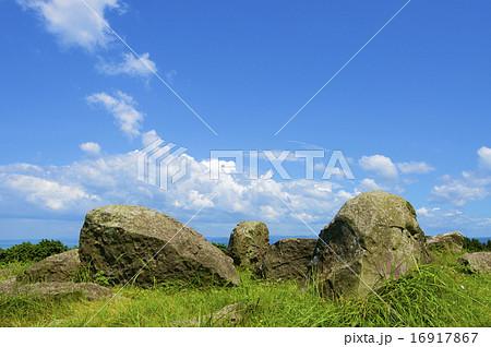 草原と岩 16917867