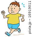 ダイエット 肥満 ベクターのイラスト 16919011
