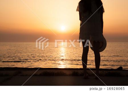 夕陽シルエット 16928065