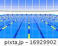 水泳プールのゴール 16929902