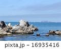 海から望む富士山 16935416