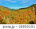 鳴子 晴れ 渓谷の写真 16950191