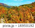鳴子 晴れ 風景の写真 16950192