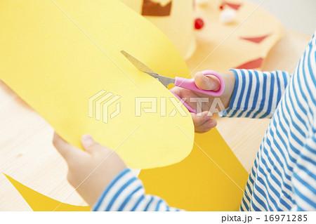 はさみで切る子ども 16971285