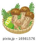 笊 ベクター 食材のイラスト 16981576