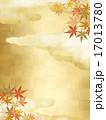 背景素材 テクスチャ 和柄のイラスト 17013780
