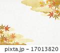 背景素材 和柄 紅葉のイラスト 17013820
