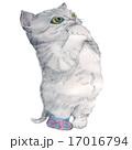 お願いする長靴をはいた猫 17016794