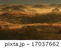 秋田県 冬師湿原の夜明け 17037662