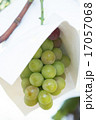 ぶどう棚 葡萄 果物の写真 17057068