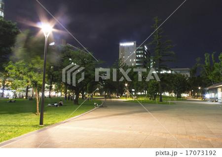 中野四季の森公園の夜 17073192