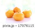 果物 果実 みかんの写真 17076115