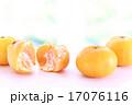 果物 果実 みかんの写真 17076116