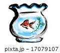 金魚鉢 17079107