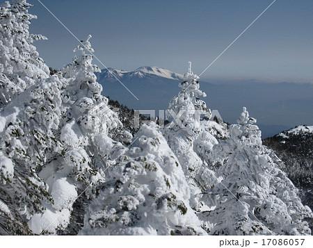 北八ヶ岳 縞枯山 雪山 ピラタス 北横岳 スノーハイク 17086057