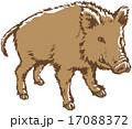 干支 亥 ベクターのイラスト 17088372