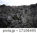 伊豆大島の火山岩 17106495