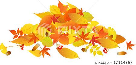 積もった落ち葉のイラスト素材 17114367 Pixta