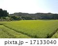 田んぼ 里山 風景の写真 17133040