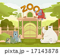 Welcome to Zoo 17143878