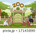 Zoo gate with australian animals 17143890
