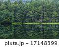 池 水鏡 御射鹿池の写真 17148399