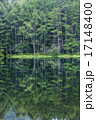 池 水鏡 御射鹿池の写真 17148400
