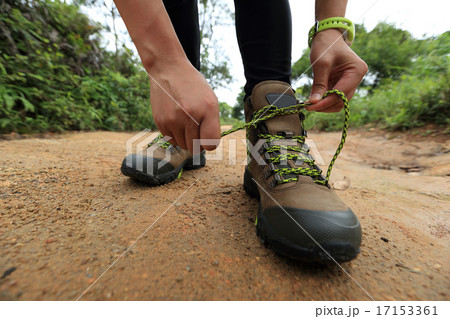 woman hiking tying shoelace on forest trailの写真素材 [17153361] - PIXTA