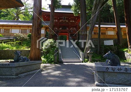 信州 松本 重要文化財「牛伏寺」 仁王門と二頭の牛の像 17153707
