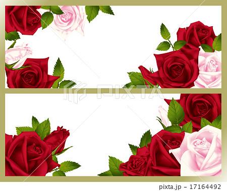 バラ 装飾 17164492