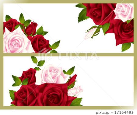 バラ 装飾 17164493