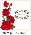 装飾 花 薔薇のイラスト 17164506