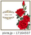 装飾 花 薔薇のイラスト 17164507