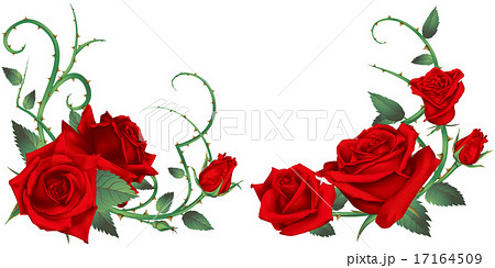 バラ 赤 装飾のイラスト素材 17164509 Pixta