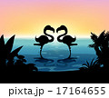 Silhouette flamingo standing in the pond 17164655