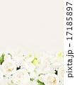 テクスチャ 背景 花のイラスト 17185897
