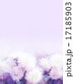 テクスチャ ローズ 花のイラスト 17185903