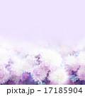 テクスチャ ローズ 花のイラスト 17185904
