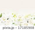 背景 ナチュラル 薔薇のイラスト 17185908