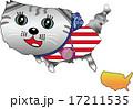 動物地図 アメリカの猫 17211535