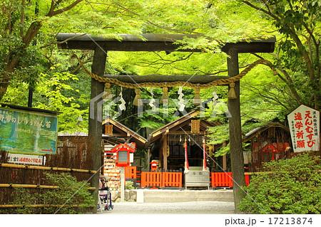 京都嵐山 野々宮神社 黒鳥居 17213874