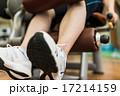 スポーツジム 17214159