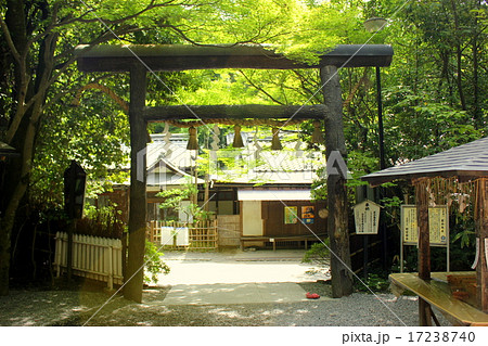 京都嵐山 野々宮神社 黒鳥居 17238740