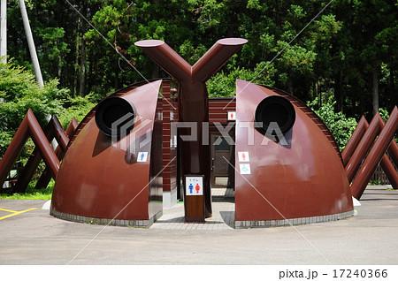 森の中のカブトムシの公衆トイレ 静岡伊豆 17240366