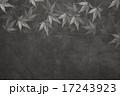 背景素材 秋 植物のイラスト 17243923