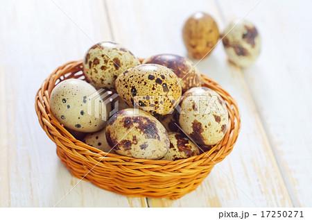 quail eggsの写真素材 [17250271] - PIXTA