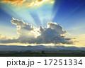 光芒 17251334