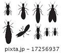 Set of Black silhouettes termites on a white 17256937
